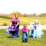 Fairy Godmother's Princess Team