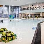 5 Best Indoor Pools in Edmonton & Area For Toddlers