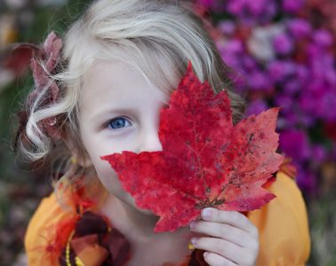What to do in October in Edmonton with Kids