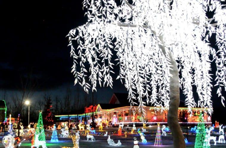 leduc-country-lights
