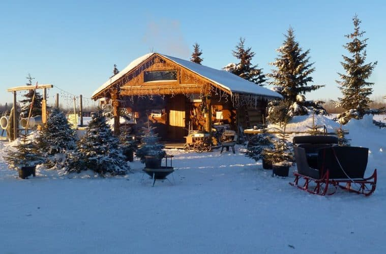 Cut Down Your Own Christmas Tree at Fir Ever Green Tree Farm ...
