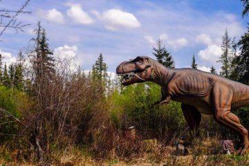 Jurassic Forest Edmonton