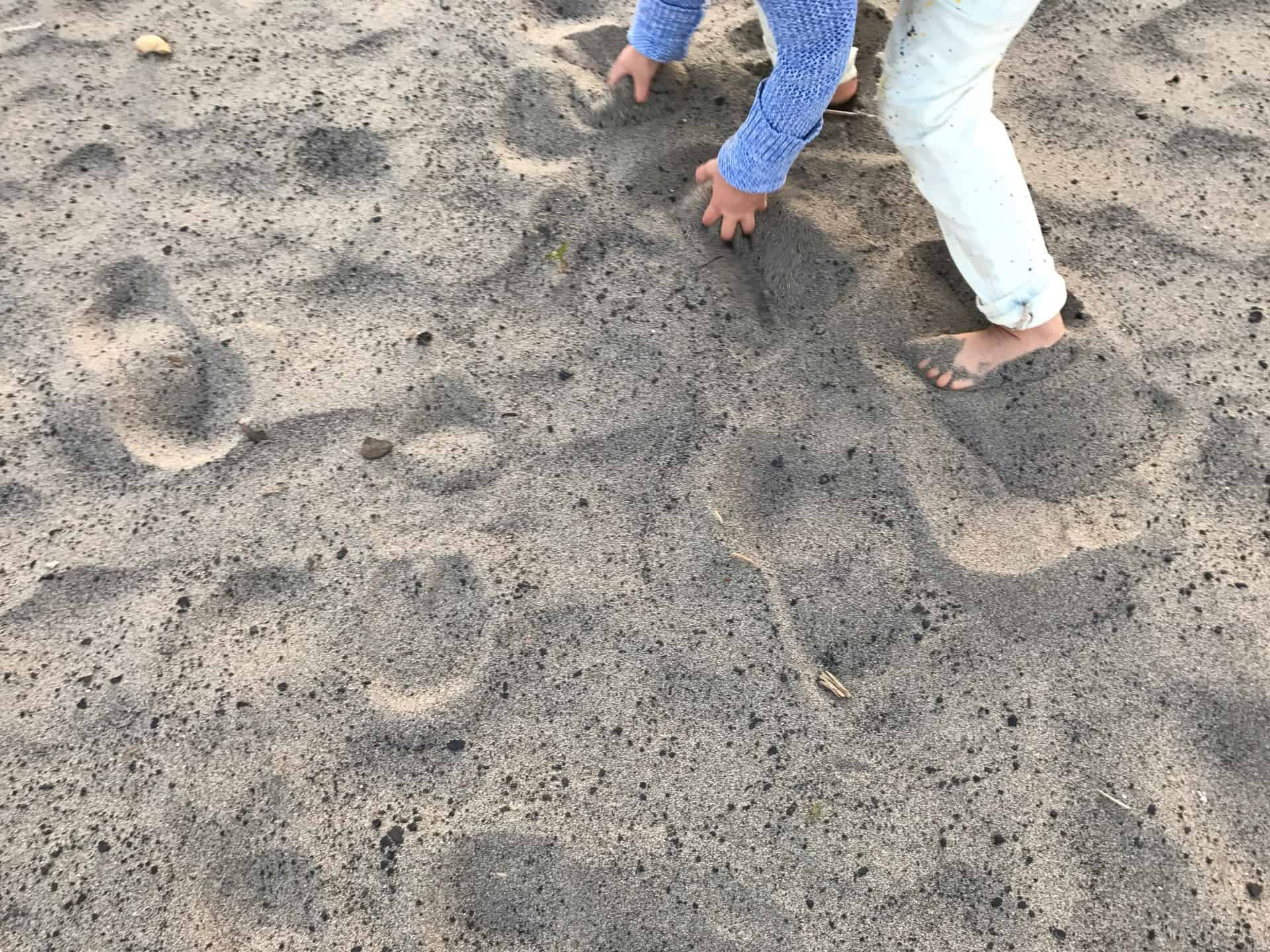 raising-edmonton-secret-beach