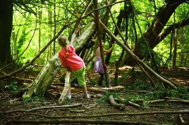 'Nature Kindergarten' Brings Learning Outdoors in Edmonton Area