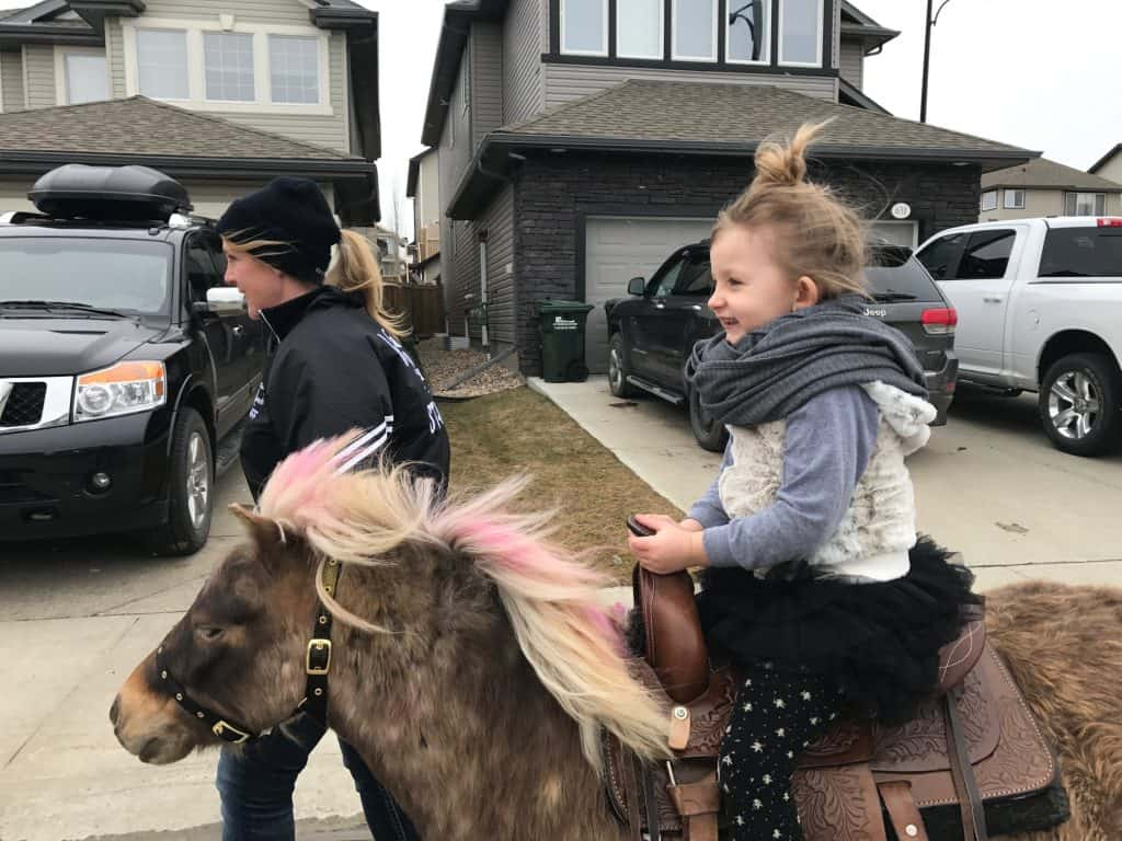 Bring a Pony to Your Party with Mobile Pony Birthday Parties