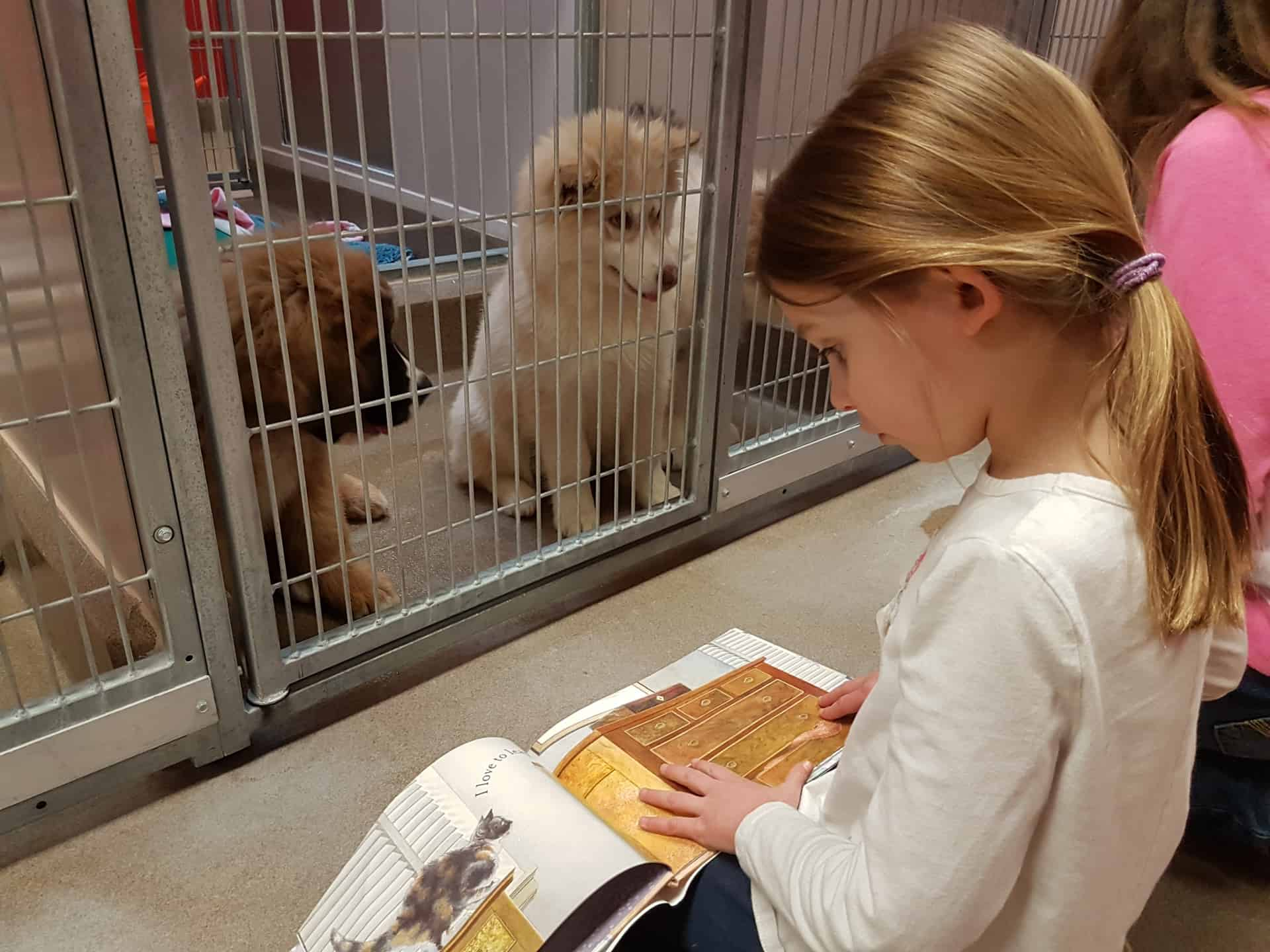 Register for Summer Camp with the Edmonton Humane Society