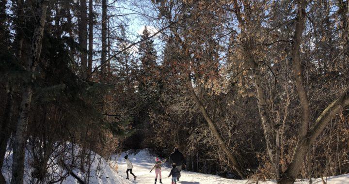 Explore Mill Creek Ravine