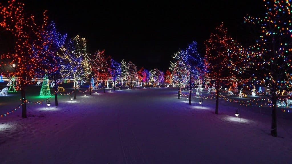 What to do in Edmonton this Weekend (With Kids) | November 29 – December 1