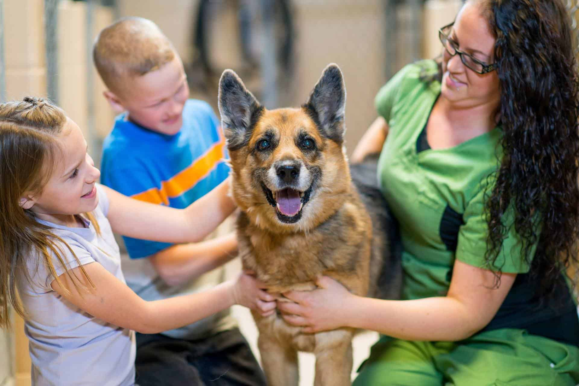Do Your Kids Love Animals? Register for Summer Camp at Edmonton Humane Society