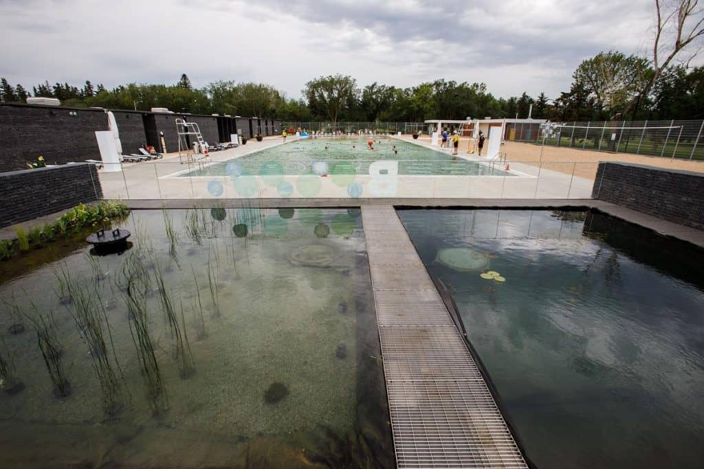 Intimidated By Borden Natural Swimming Pool?Here's what you Should Know Before you Go