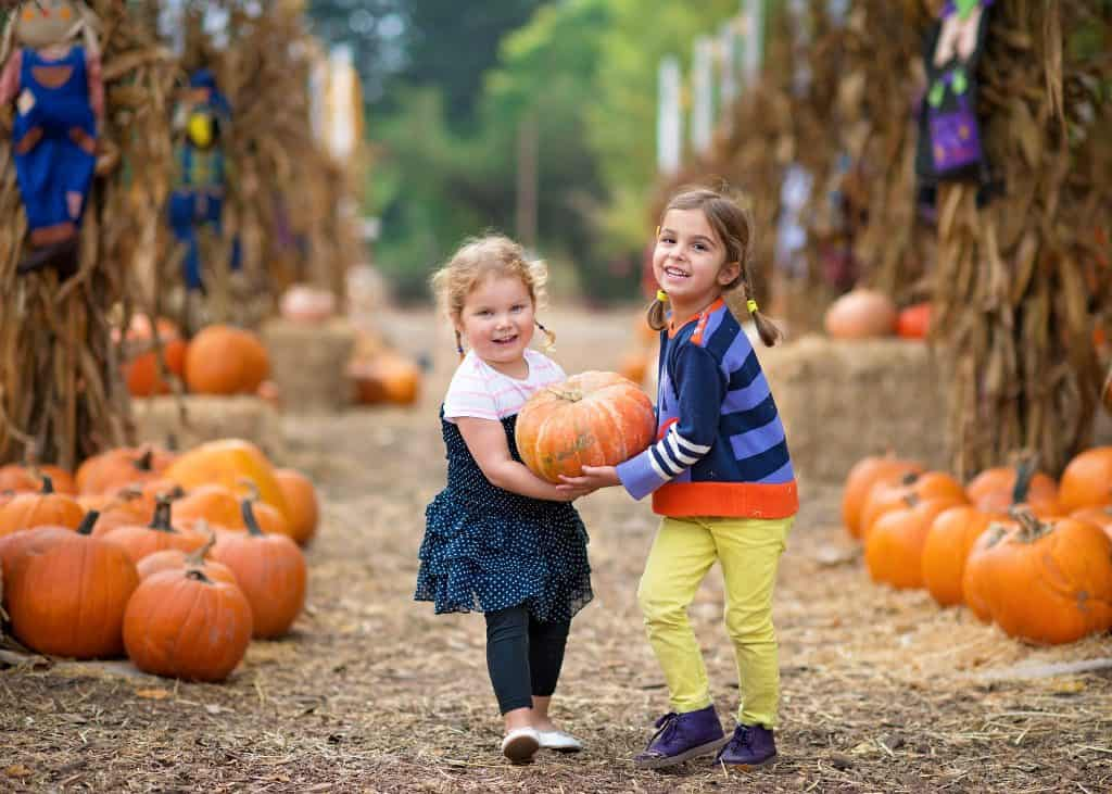 6 Family-Friendly Fall Harvest Festivals in Edmonton and Area