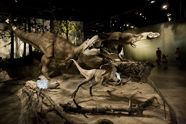 Give the Gift of Sleeping with the Dinosaurs at the Royal Tyrrell Museum