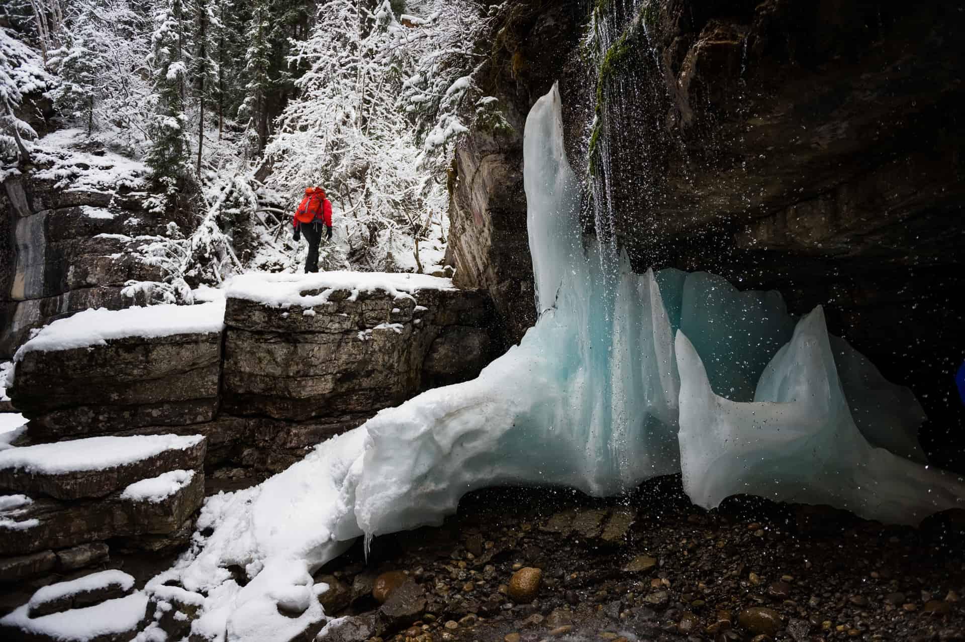 5 Kid-Friendly Magical Winter Hikes for Exploring Alberta