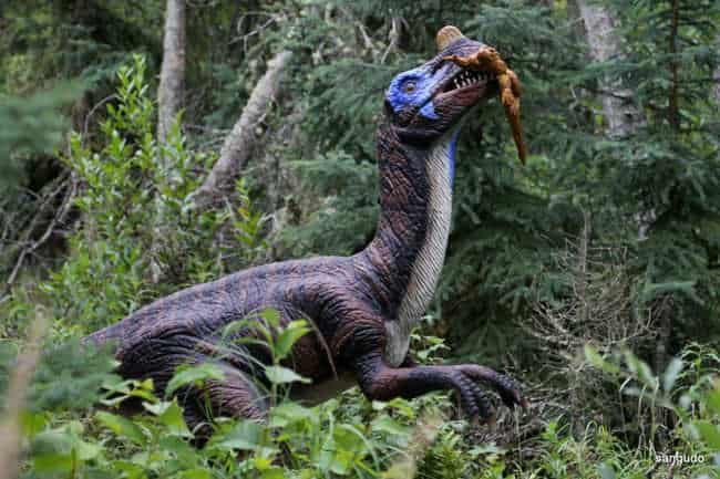 Jurassic Forest Opens for the Season on May 1, 2019