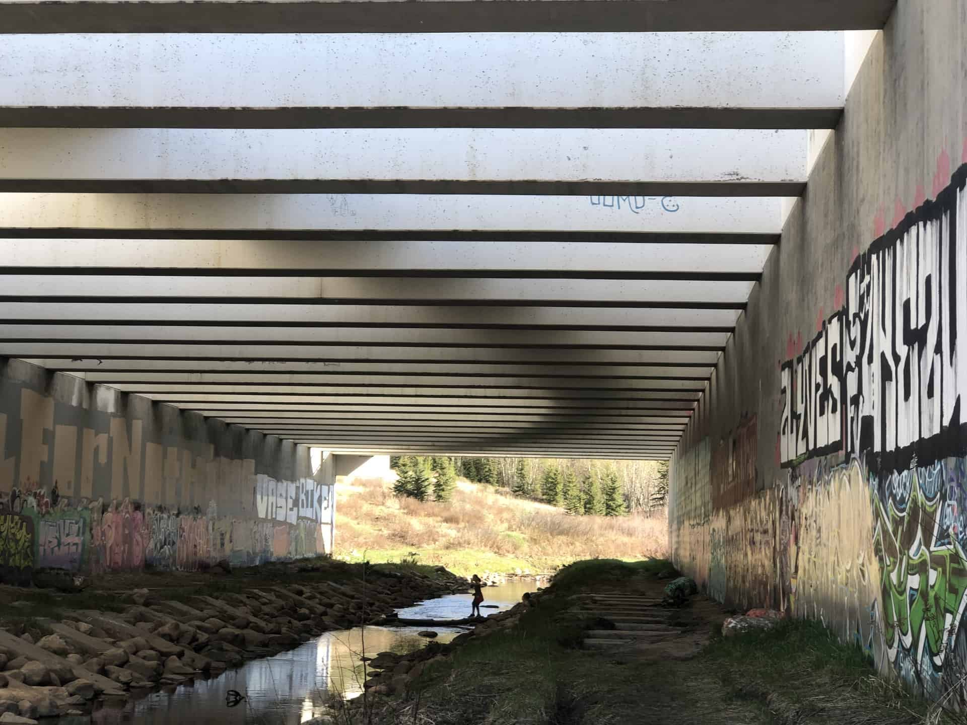 8 Hidden Places to Discover in the Edmonton River Valley this Summer
