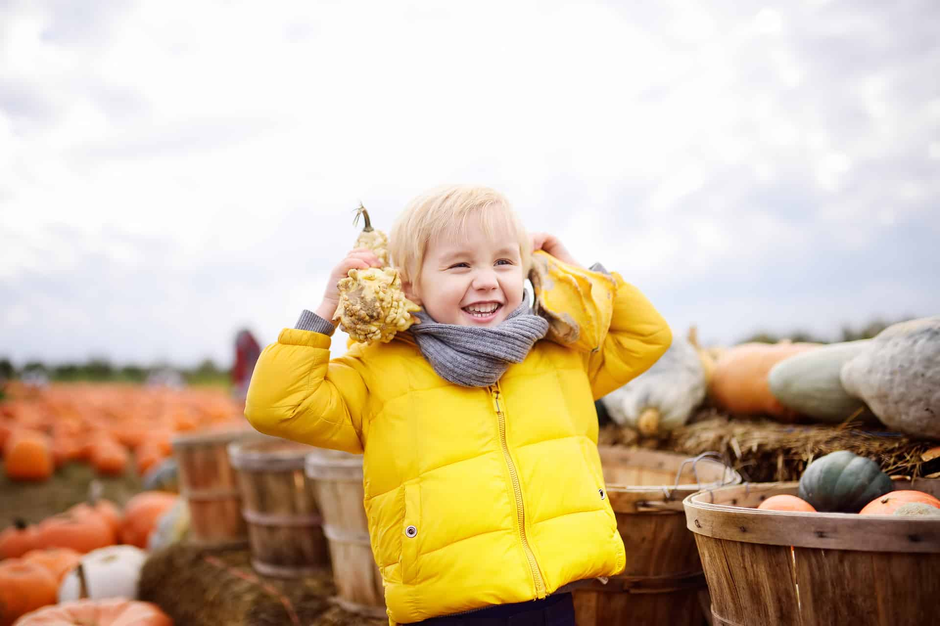 Get out of Town and Visit the Smoky Lake Pumpkin Festival on 10.05