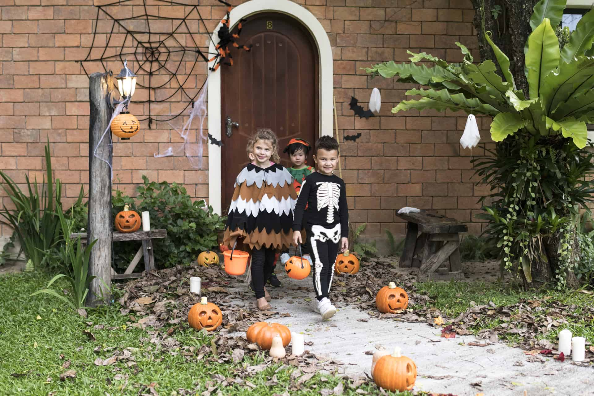 10 Edmonton Kid-Friendly Haunted Houses You can see for FREE This Year   2019