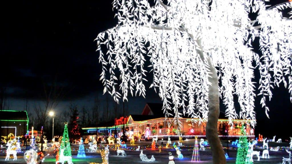 Leduc Country Lights Opens This Weekend (November 30)