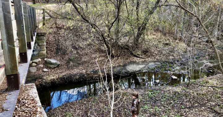 Exploring the Bridges of Kennedale Ravine Trail with Kids